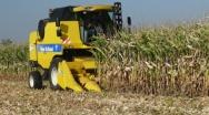 Kombajny do zbioru kukurydzy na ziarno